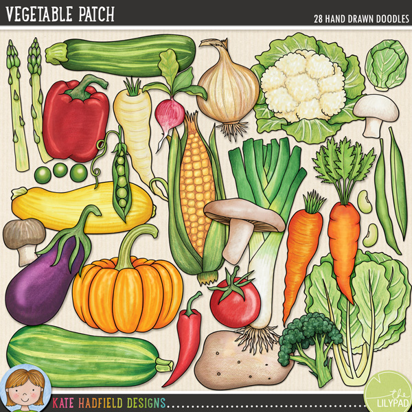 Vegetable patch for Vegetable patch
