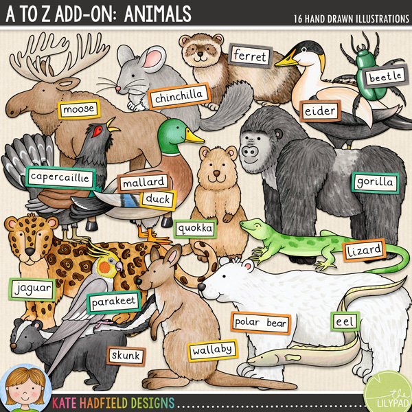 An add-on to my main A to Z set, this pack contains 16 extra animals and birds along with co-ordinating wordy-bits! Fun for recording trips to the zoo and other animals encounters, this pack contains the following hand-drawn illustrations: beetle, capercaillie, chinchilla, eel, eider, ferret, gorilla, jaguar, lizard, mallard duck, moose / elk, parakeet, polar bear, quokka, skunk and wallaby. FOR PERSONAL & EDUCATIONAL USE (please see my Terms of Use for more information)