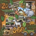 Safari Malarky