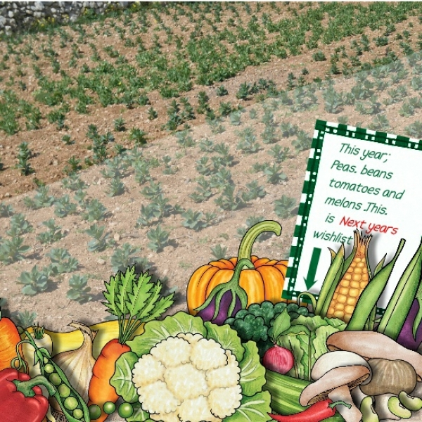 Vegetable Contains Vegetable patch workwithnaturefo