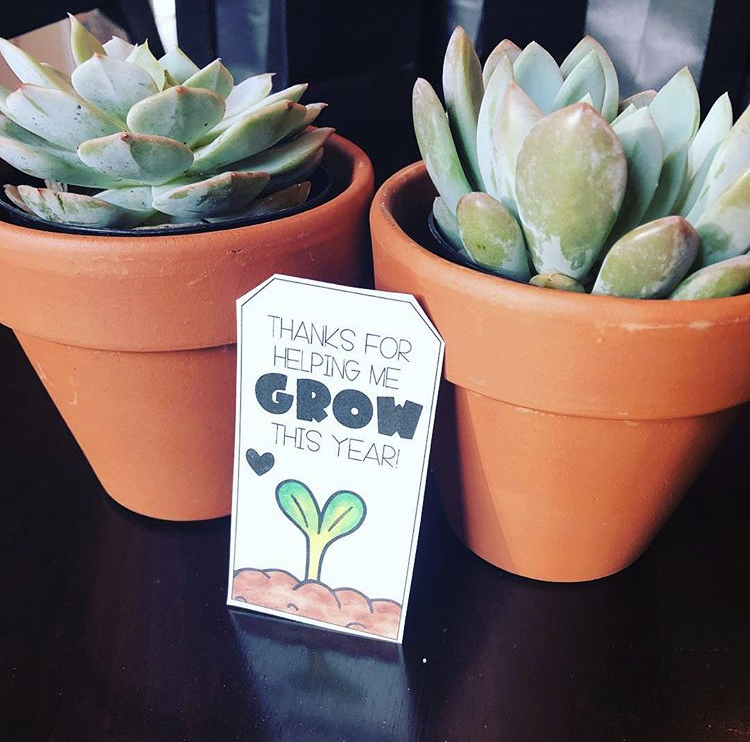 These cute succulents and gift tag make a fun teacher appreciation gift!